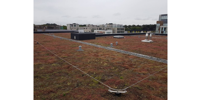The Advantages of Having a Green Roof